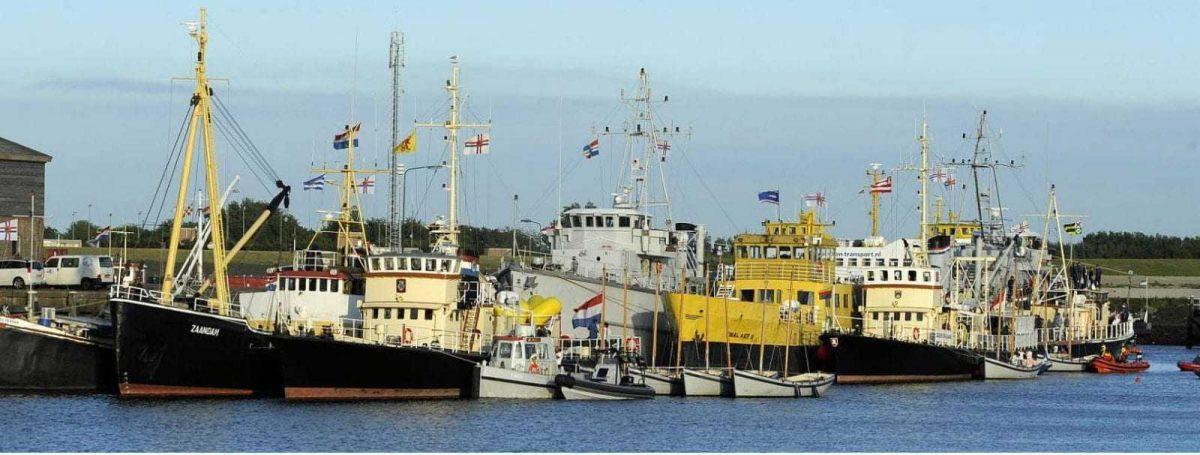 Organisatie Zeekadetkorps Nederland